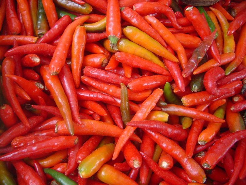 Efeitos da pimenta no organismo