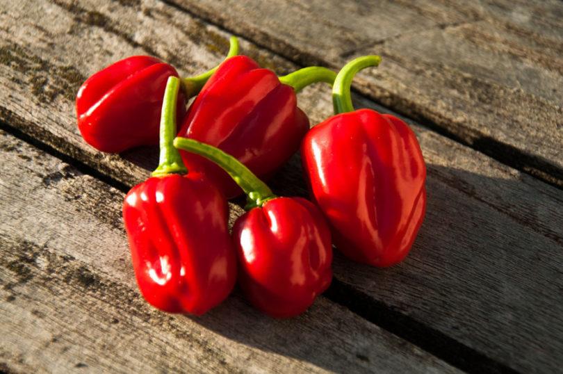 Sorvete de pimenta
