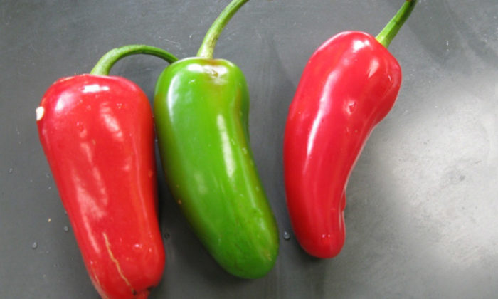 Pimenta jalapeño